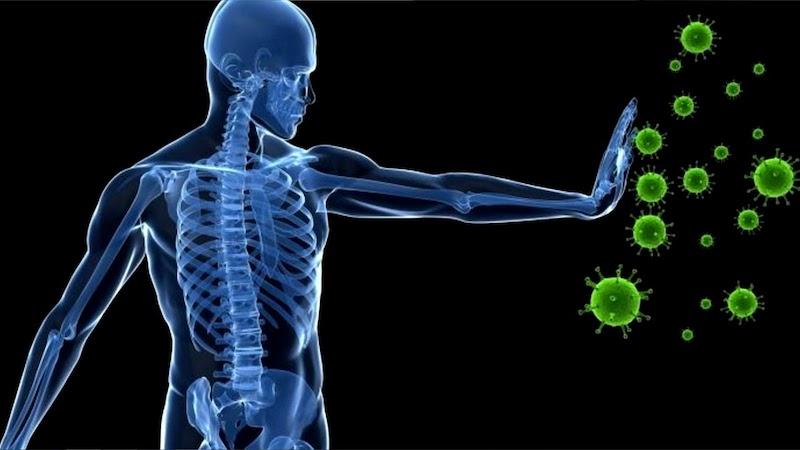 El ejercicio y el sistema inmune